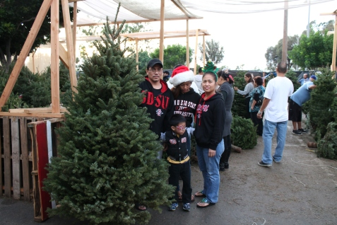 Christmas Tree shopping with the fam